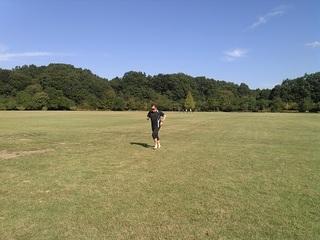 緑の丘2.jpg