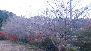 20131120_04.jpg